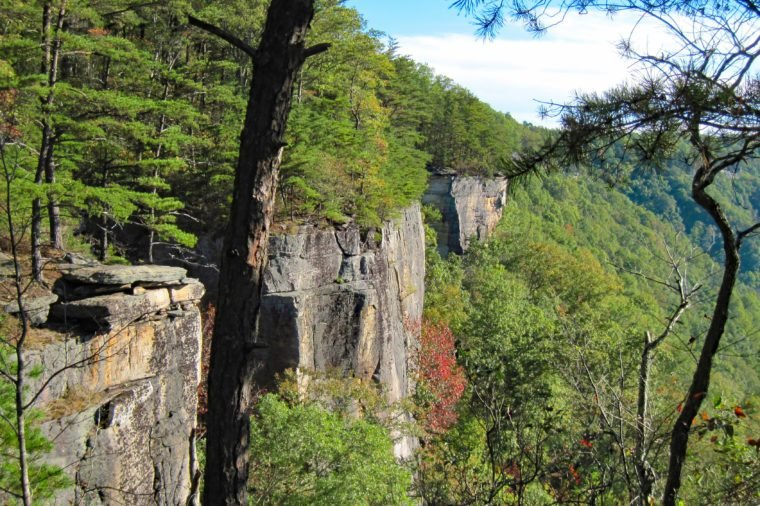 New River Gorge Endless Wall hiking trail view from Diamond Point.