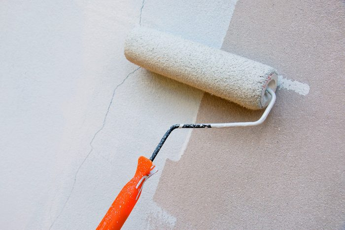 Paint roller and paint stripe