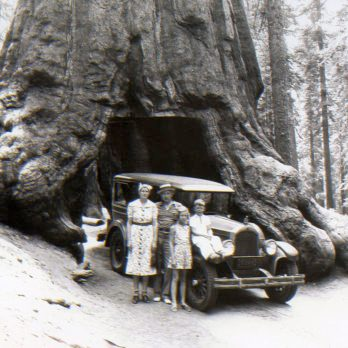 25 Rare Vintage Photos of America's National Parks