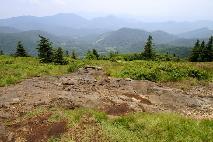 Summertime View from Roan Mountain Balds Horizontal