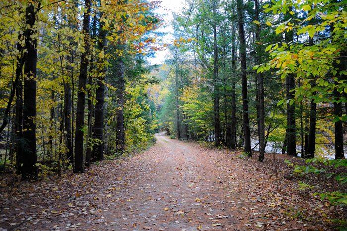 The Mohawk Trail through The Berkshire Hills (Massachusetts, USA) in autumn