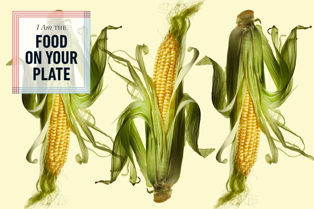 If Corn Could Talk, Here's What It Would Tell You