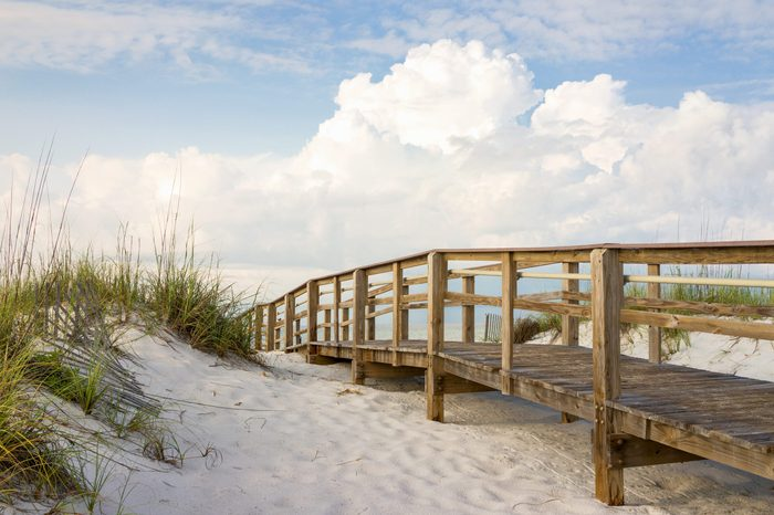 Inviting boardwalk through the sand dunes on a beautiful beach in the early morning. Beautiful puffy clouds in the sky.