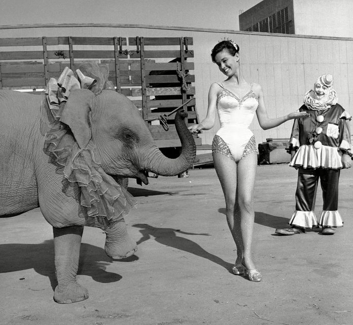 circus movie kathy grant