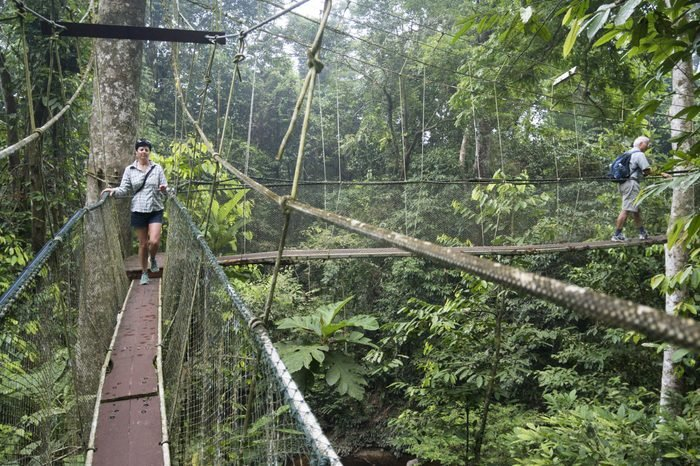 MODEL RELEASED: A tourist shuffles along one of the world's longest canopy walks in the rainforest at Gunung Mulu National Park in Sarawak, Malaysia.