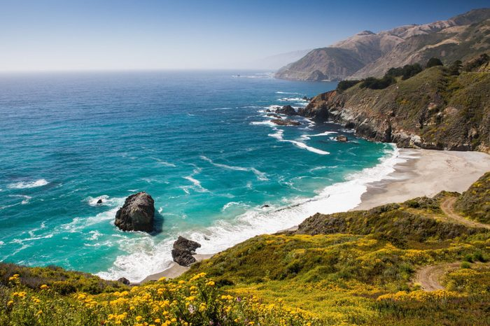 Nature along the route 101 at the Californian Coast from Los Angeles to San Francisco