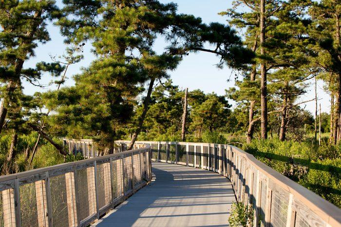 Walkway through Delaware Junction and Breakwater Trail