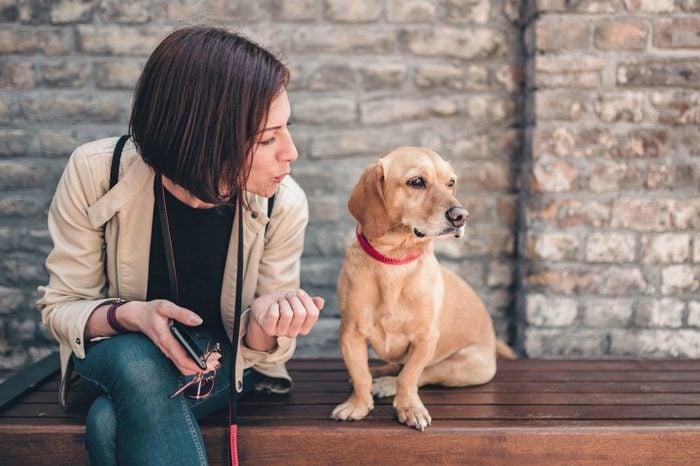 talking to dog