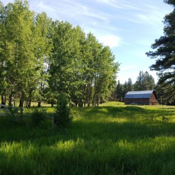 The Nicest Place in Montana: Ovando