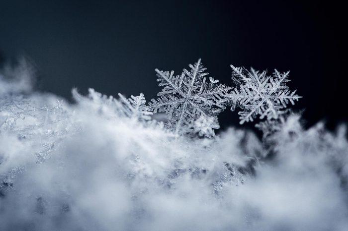 Macro snowflakes in snow