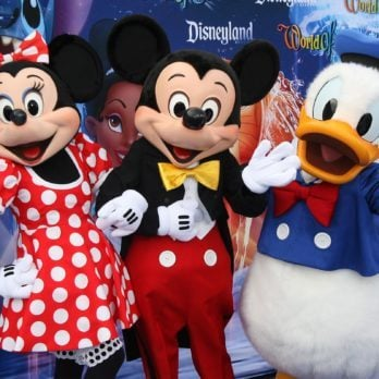 Why Disney World Bans Adults Wearing Costumes