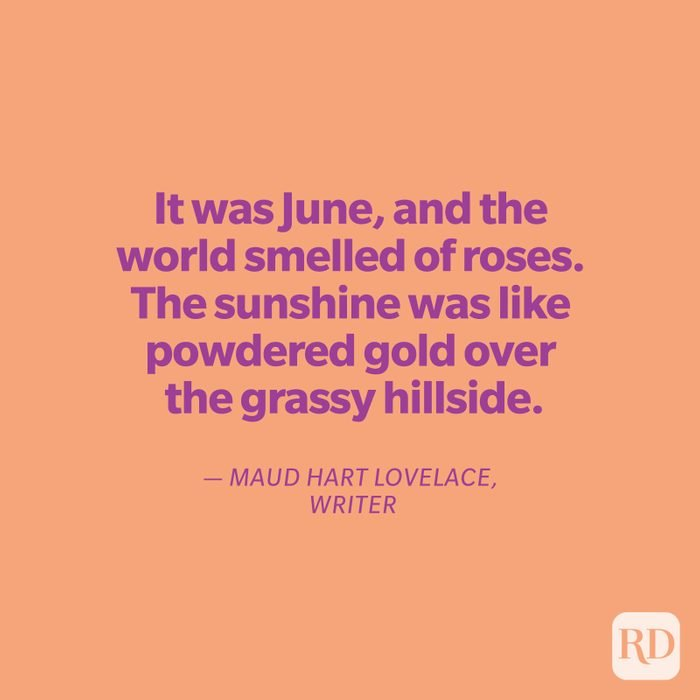Lovelace quote