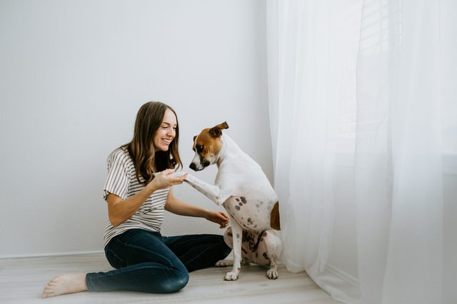Woman training her dog at home
