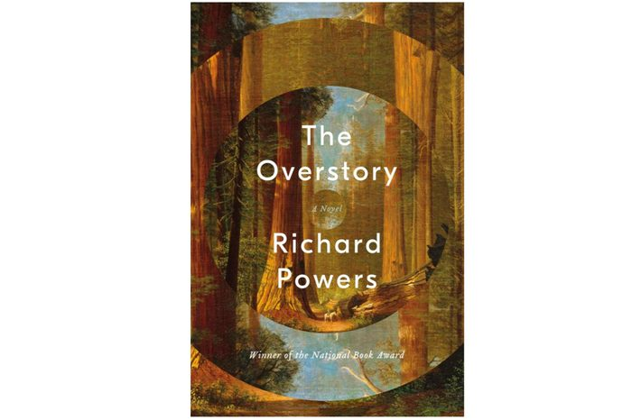 06_The-Overstory-by-Richard-Powers