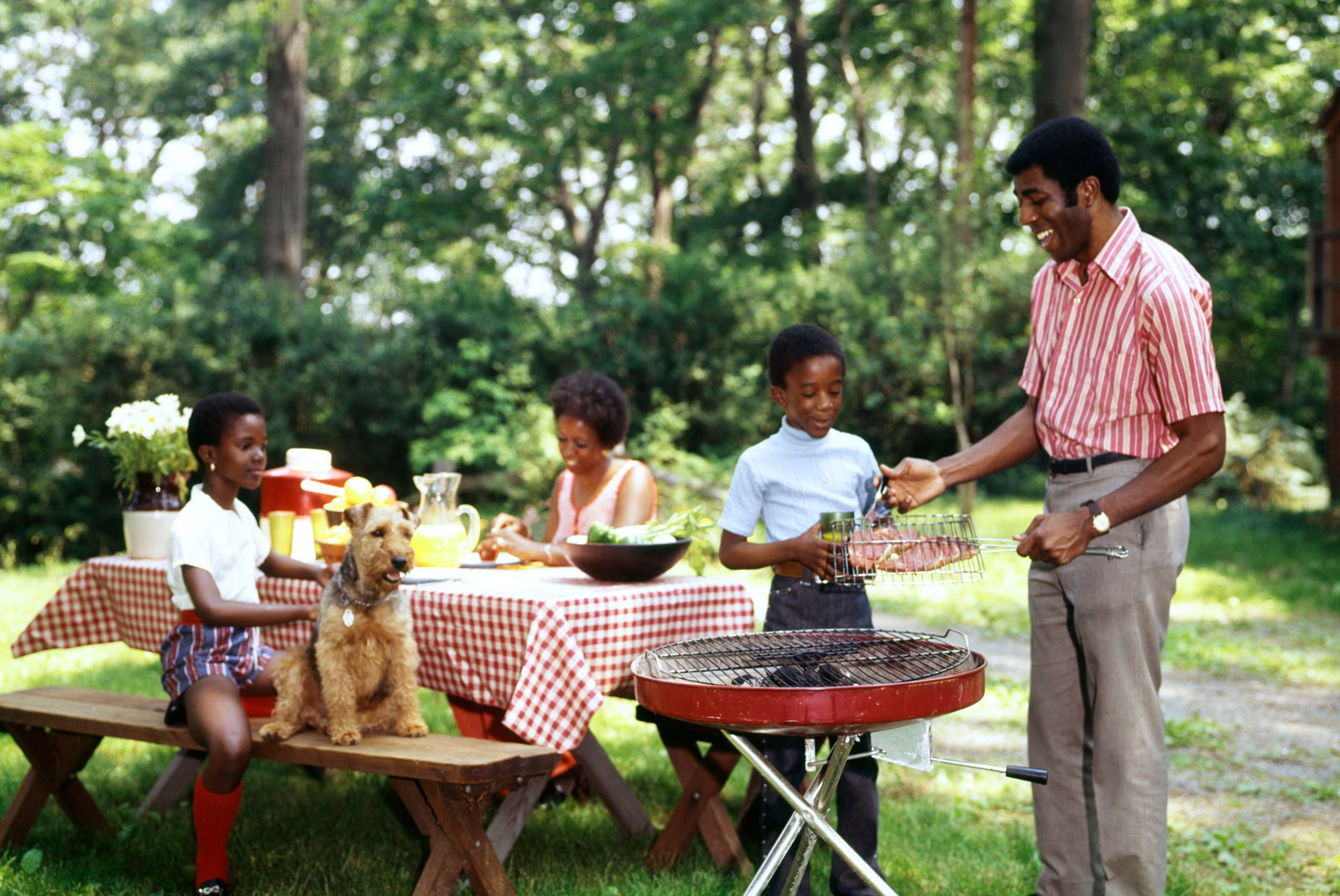1970s AFRICAN AMERICAN FAMILY BACKYARD PICNIC BARBECUE