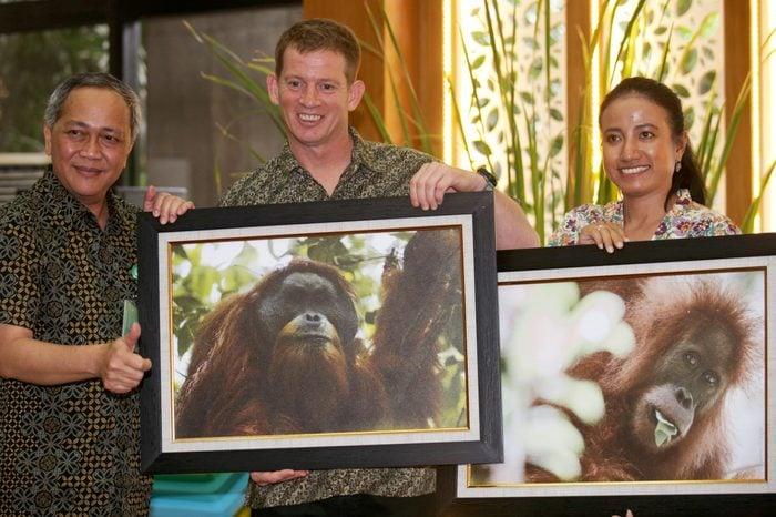 Tapanuli orangutan found to be a distinct species, Jakarta, Indonesia