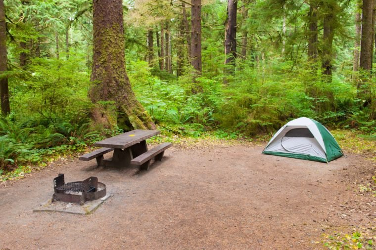 A tent camp site near Olympic National Park