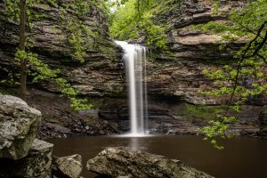 Cedar Falls Petit Jean State Park Arkansas. The long waterfall fills the dark pool of water and dark rocks contrasted by green maple, pine and star shaped leaves of a sorghum tree frame it.