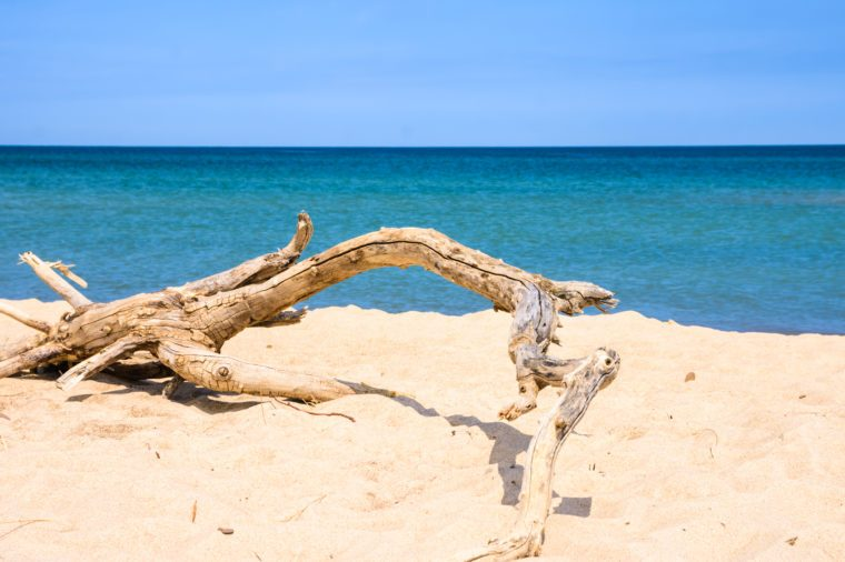 Clear blue sky With cloud and sea at Indiana Dunes State Park