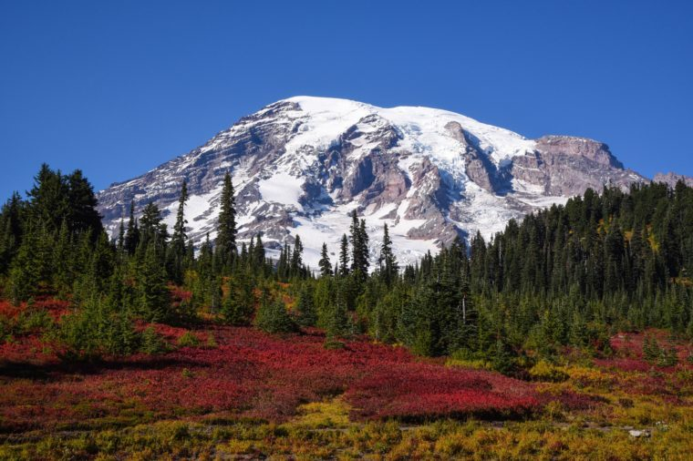 Beautiful Paradise, Washington state, USA in the fall with snow on Mount Rainier on a sunny day with blue sky