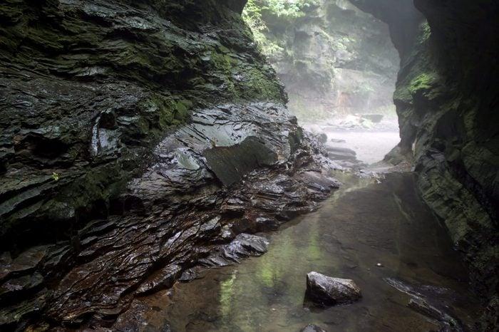 Water-hewn limestone ravine. Turkey Run State Park, IN.