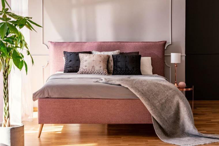 Black and grey pillows on pink bed in pastel bedroom interior with palm and lamp. Real photo