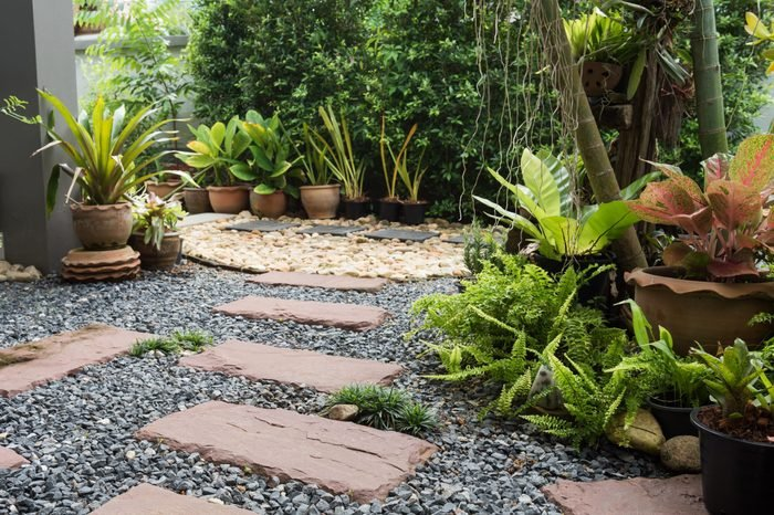 Simple pathway in home garden landscape