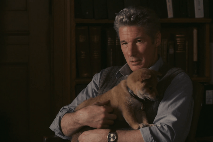 Hachi: A Dog's Tale movie