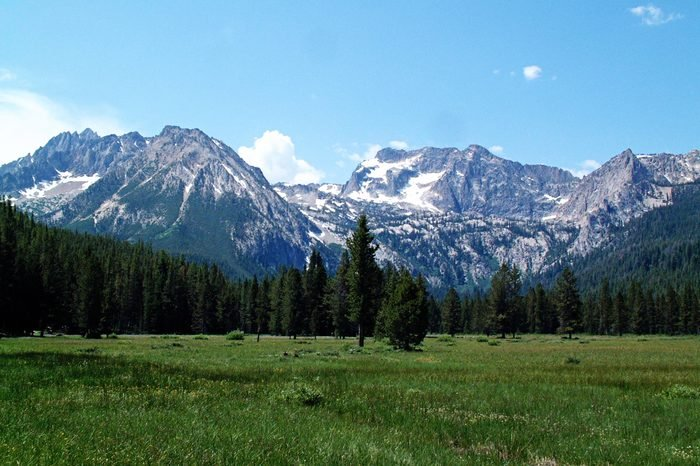 an alpine meadow near Stanley, Idaho, with the Sawtooth Mountains in the background