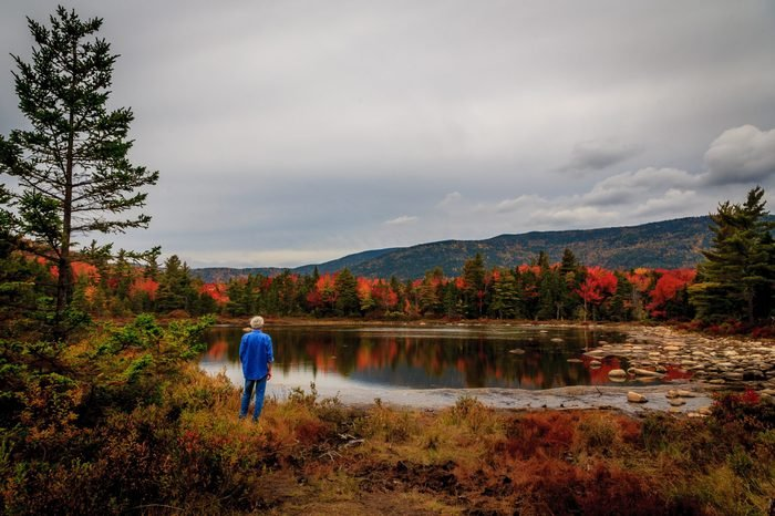 Man at a New Hampshire pond takes in the autumn leaves and the mountains/Man at pond enjoys autumn leaves