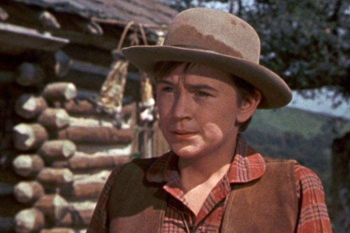 Old Yeller the movie