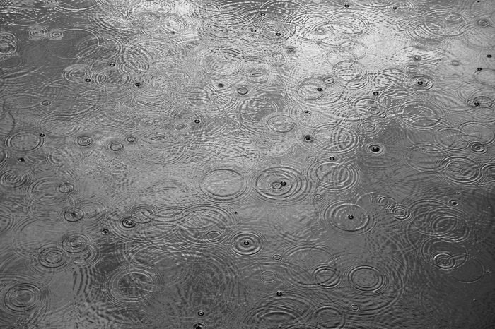 Rain drops form circles on the water