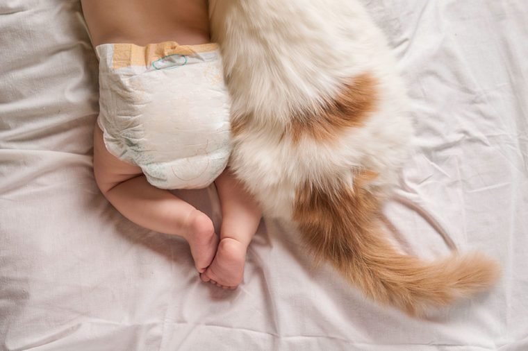 cat and baby on bed