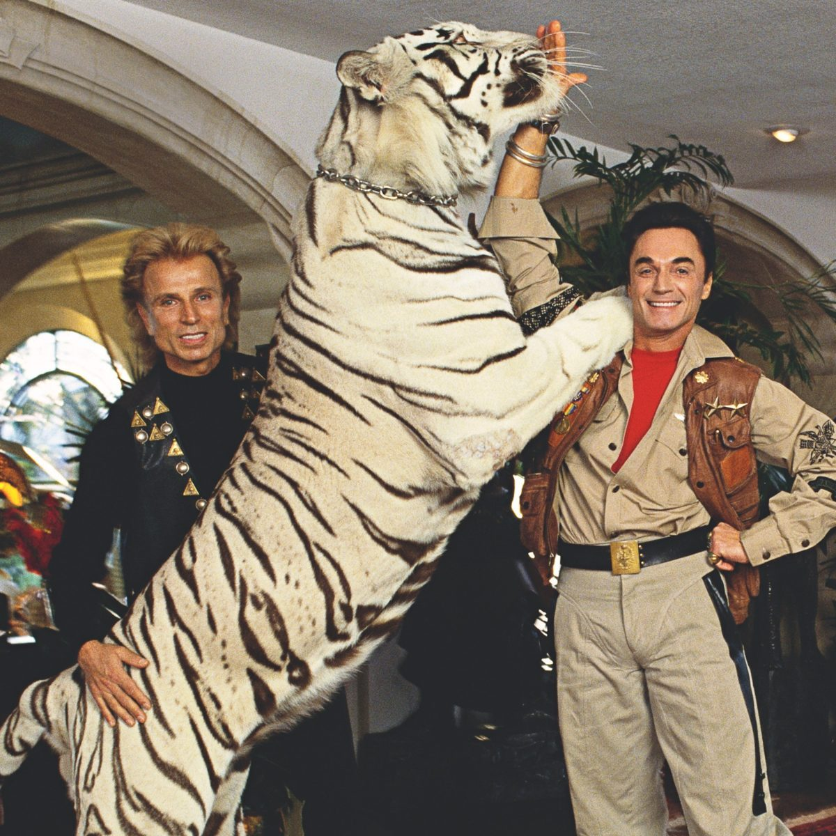 Siegfried and Roy: What Really Happened the Night of the Tiger Attack?