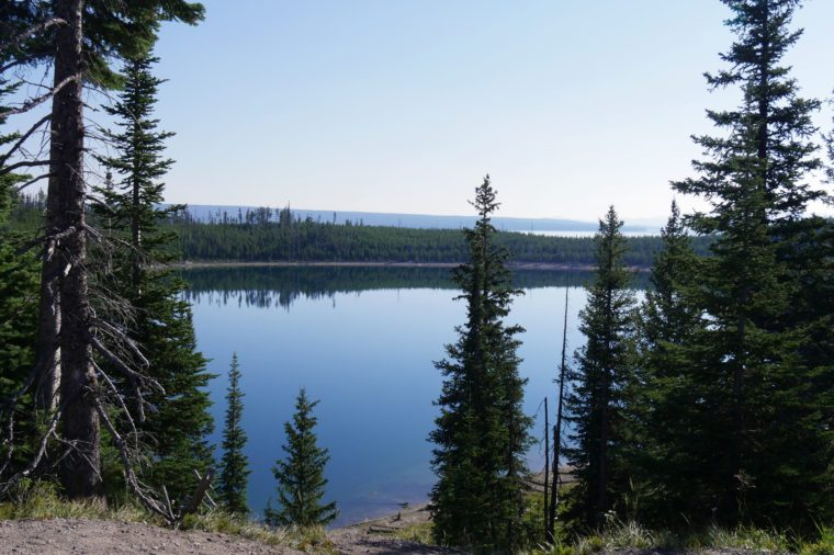 Scenic view at Lake Yellowstone with pine trees along the bank, Yellowstone National Park, Wyoming, USA.