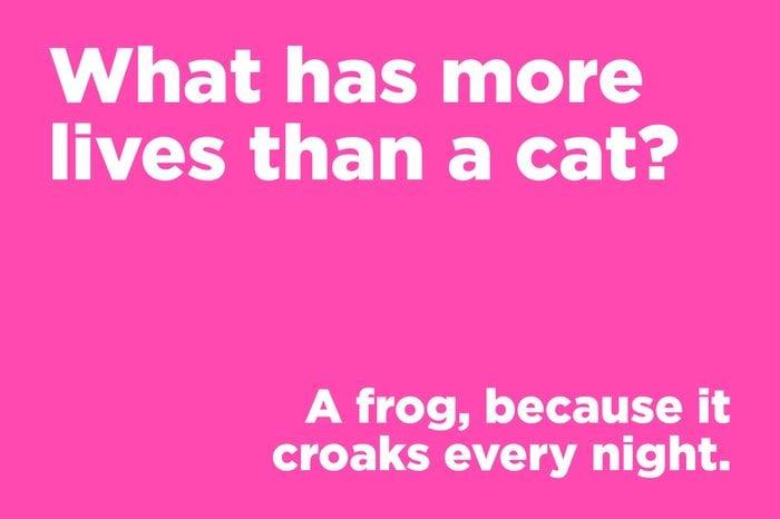 corny joke cat lives