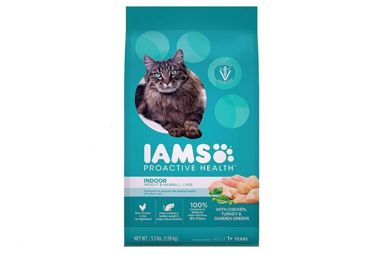 04_Best-dry-food-for-indoor-only-cats