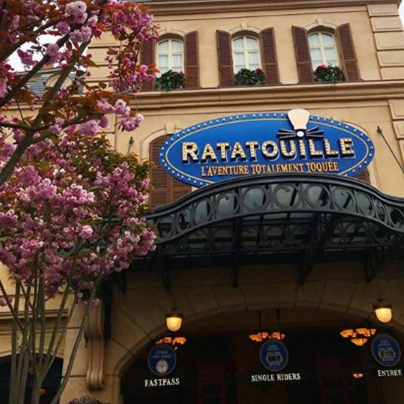 ratatouille ride