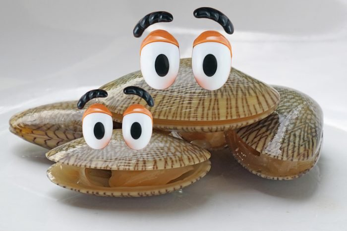 07_Happy-as-a-clam