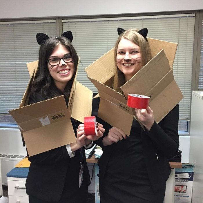 Bureau-cats halloween costumes