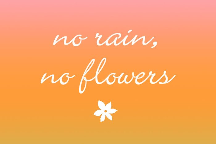 no rain, no flowers iphone wallpaper