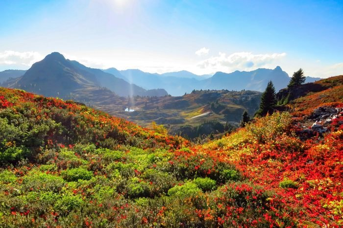 North Cascade Range, Washington / USA: Autumn at the Yellow Aster Butte hiking trail