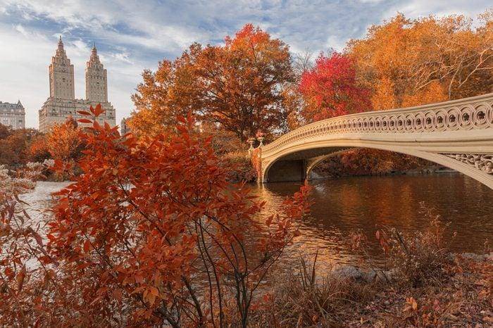 Bow Bridge in central park during Autumn