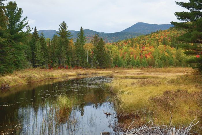 Fall colors on the shoreline of Stratton Brook Pond in the great north woods of Carrabassett Valley, Maine.