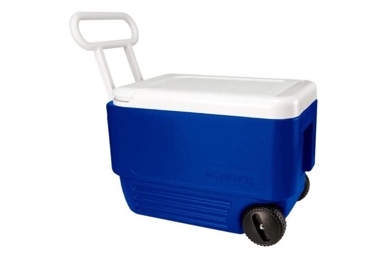 blue igloo cooler
