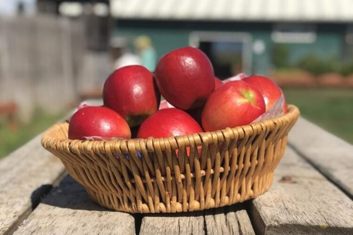 Kiyokawa Family Orchards, Parkdale Oregon