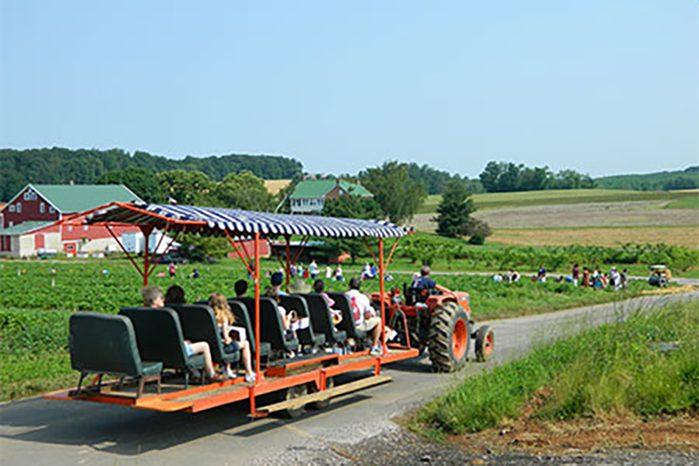 Pyo Wagon Ride at baughers orchard