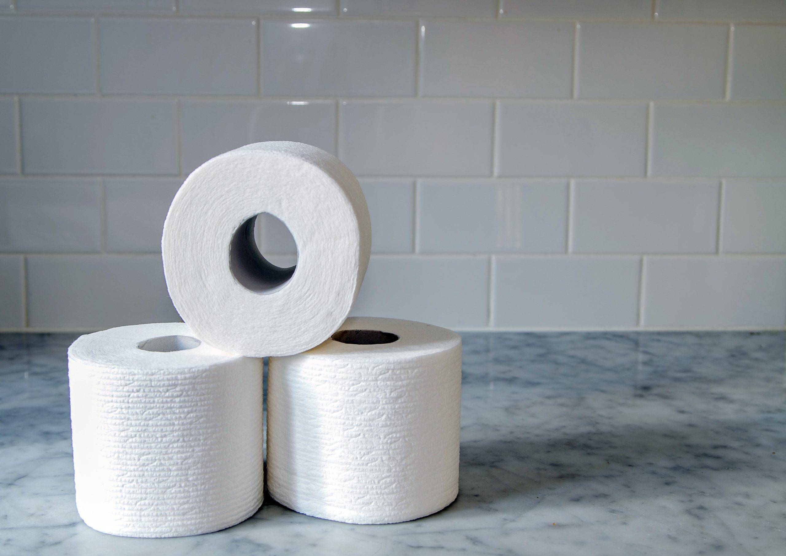 Rolls of toilet paper.