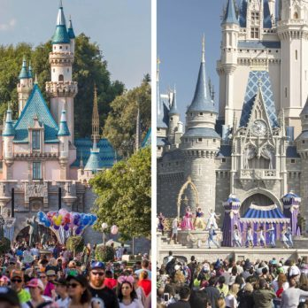 Disneyland vs. Disney World: Which Gets More Visitors?