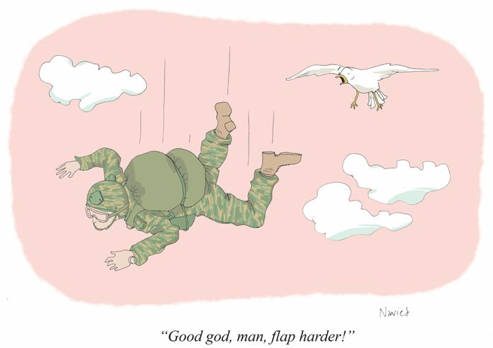 "a bird says to a falling man in camouflage, ""good god, man, flap harder!"""